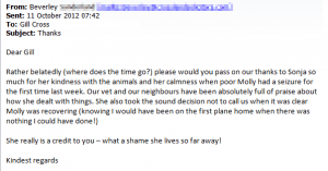 pet sitter - full of praise about how she dealt with things