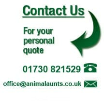 Ring us on 01730 821529