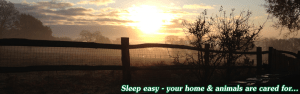Sleep easy - your house sitter will care for all your animals