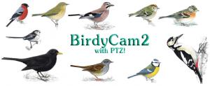 BirdyCam2