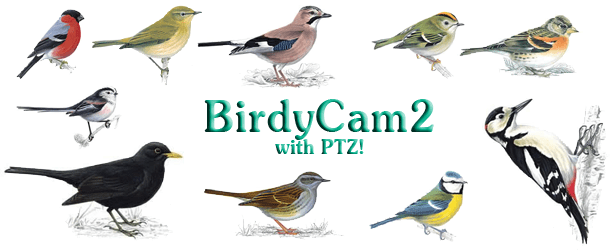 birdycam2-page-picture
